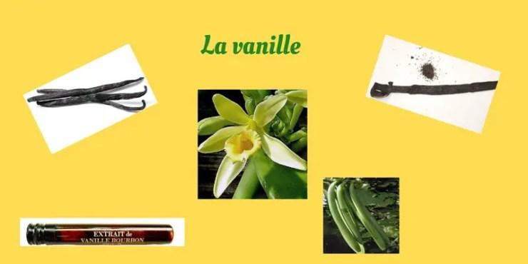 La vanille en cuisine