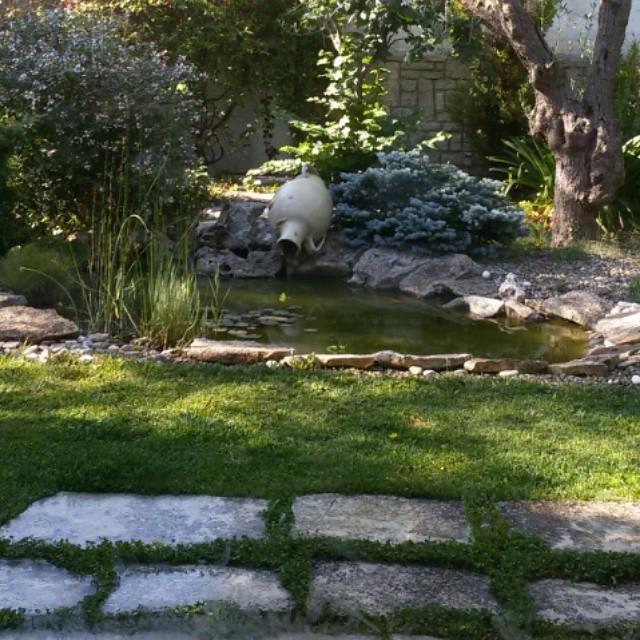 giardino d'estate