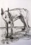 Introspezioni, opere di Salvatore Difranco
