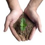 Guía de Hábitos de vida sostenible