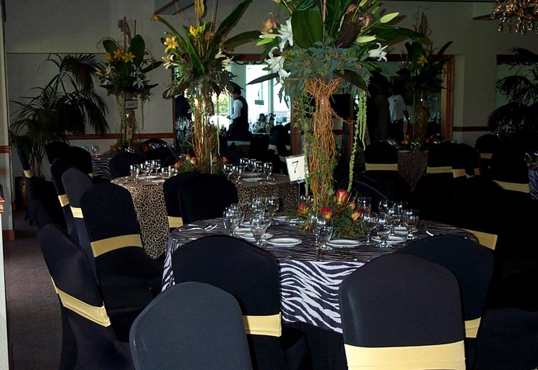 gold chair covers with black sash overstuffed club chairs party photos pg 2 bronze taffeta organza blkspdxgoldband zebra jpg