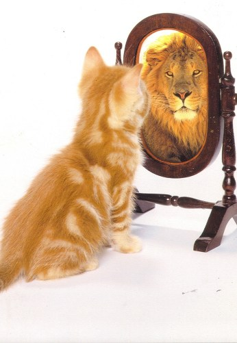 lion-and-self-esteem-copy