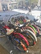 Bikes_biketour