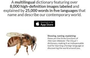 Description du dictionnaire viseul MW