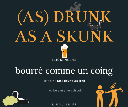 fiche expression anglaise (as) drunk as a skunk