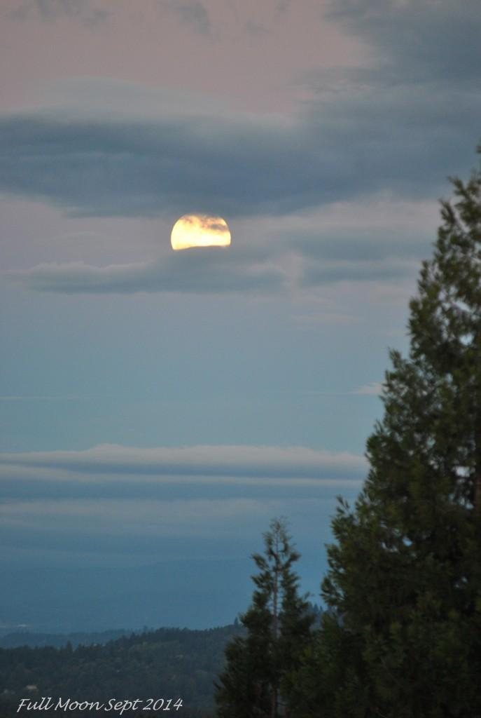 Supper Moon Sept 8 - 2014 (3)