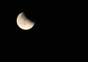Lunar Eclipse Sept 27 - 2015 (4)