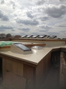 Fibreglass roof for Colchester Zoo by Lining Systems