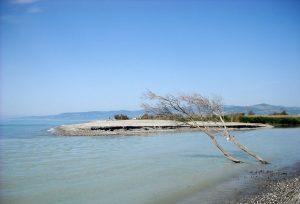 Mare di Metaponto. Stupenda vista del litorale nei pressi di Metaponto