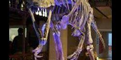 Primato italiano: è nostro il più antico dei grandi dinosauri