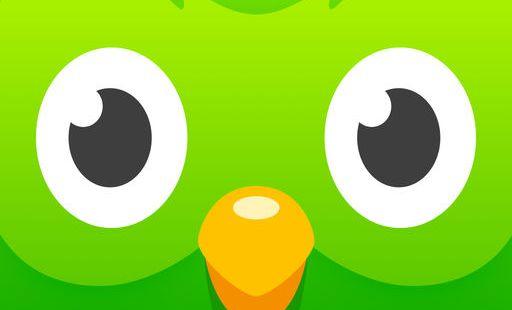 Duolingo sova