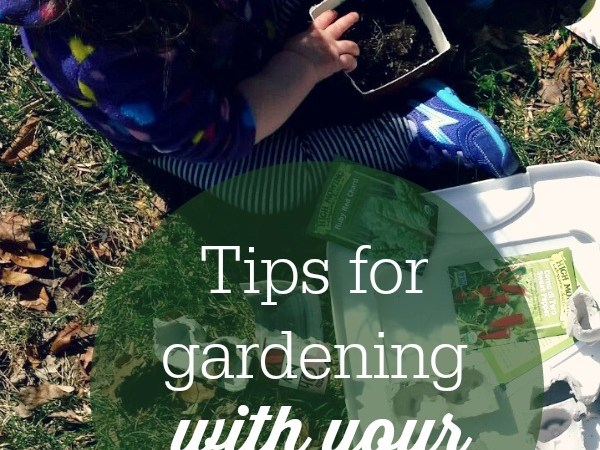 Planting and playing with dirt are a really fun sensory activity to do with young children. These 7 tips will help you to get the most out of gardening with your toddler!