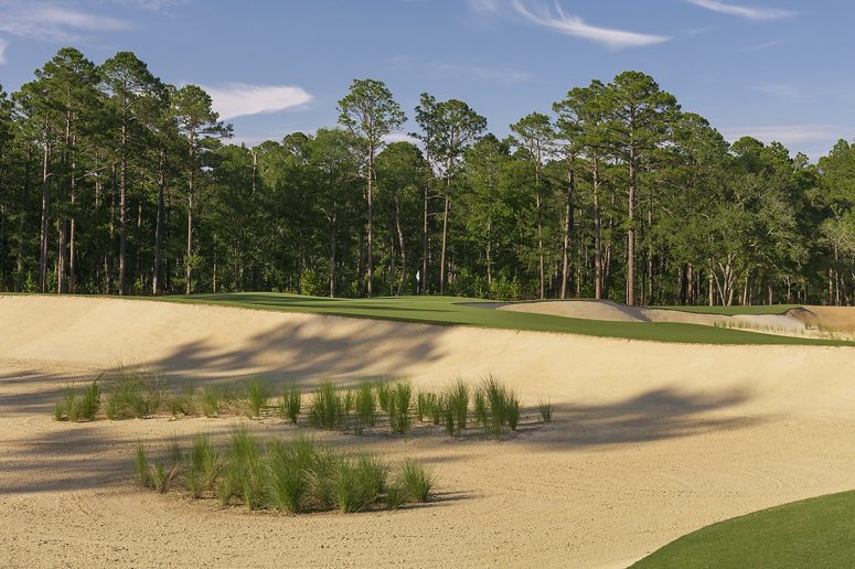Image result for congaree golf club