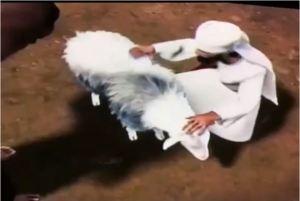 El Sacerdote examinando a la oveja