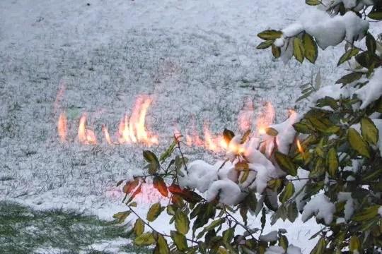 la neige en feu