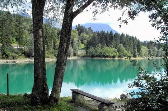 la forêt du lac artificiel de barcis, dans la province de pordenone, offre un
