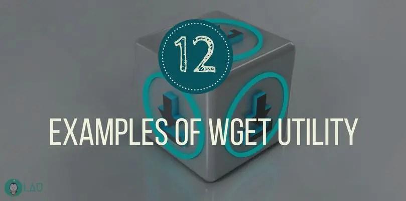 12 Practical Examples Of wget Command In Linux - LinuxAndUbuntu