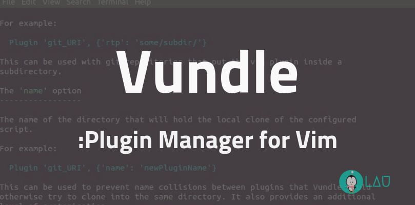 Installing Vundle The Plugin Manager For Vim