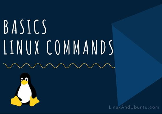 basic linux commands for beginners