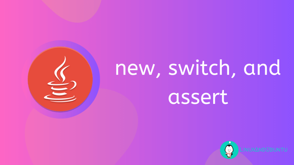 new switch assert keywords in java