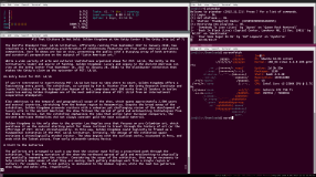 Clockwise from top left: htop, pianobar, screenfetch, links browser