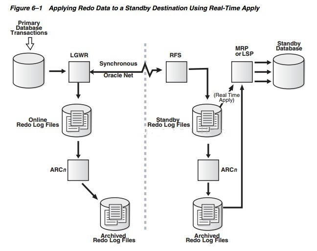 Download Activate Oracle Standby Database 10g free