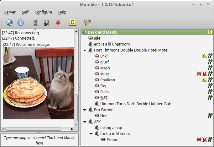 Mumble - high quality voice chat software - LinuxLinks