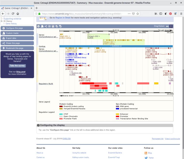 Ensemble genome browser