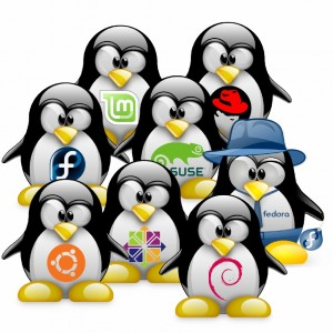 With so many Linux distributions, it can be hard to choose