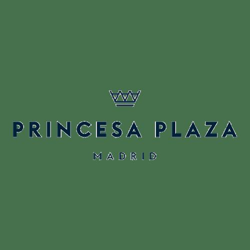 Hotel Princesa Plaza Logo. Linzex Studios Madrid. Productora audiovisual.