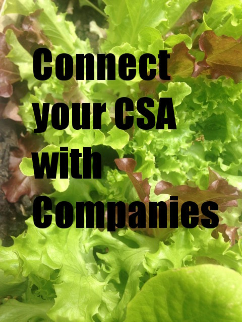 Connect CSa's with Companies