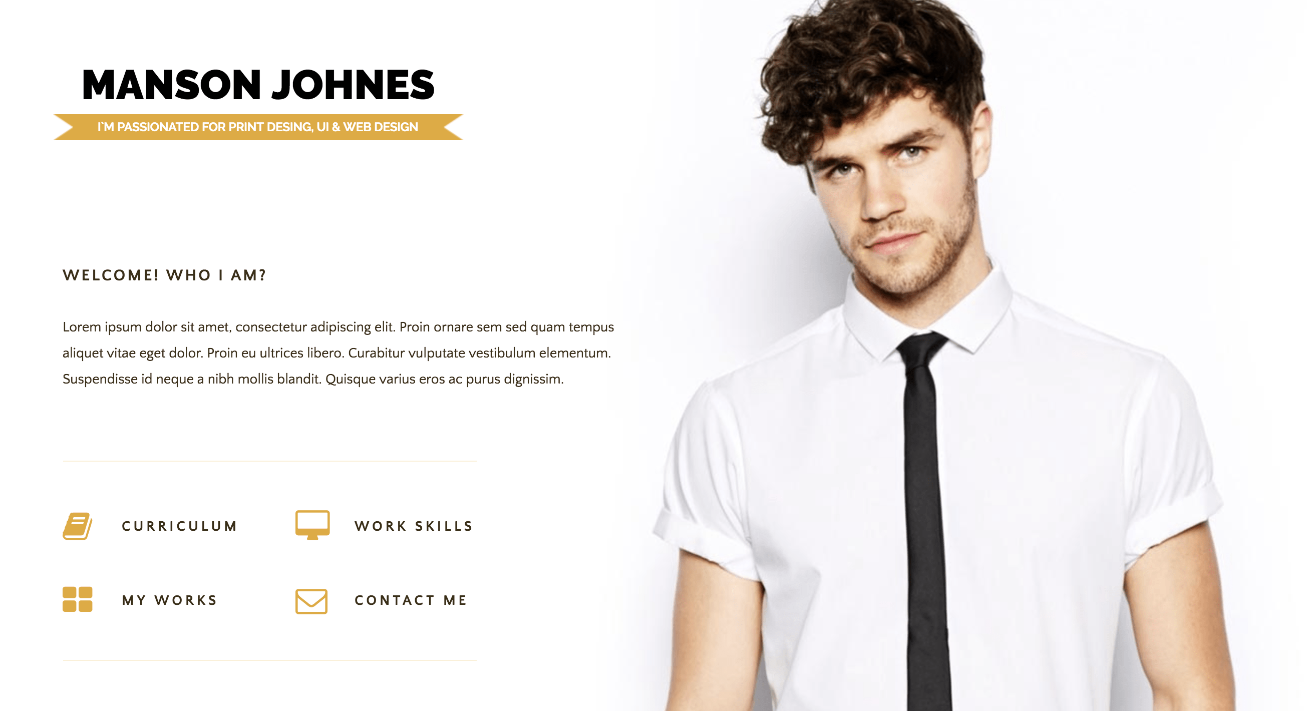 Hireme - Responsive Resume WordPress Theme.png