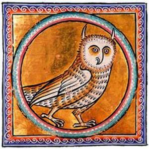 F032_Owl