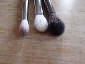 Eye Brushes: Fluffy
