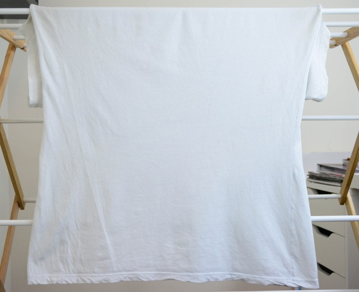 Everlane White V-Neck