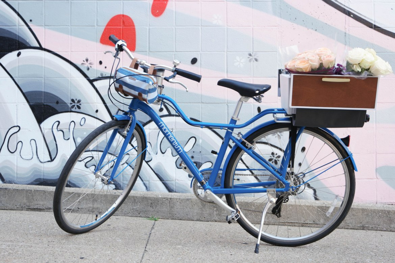 Chic Bike Accessories
