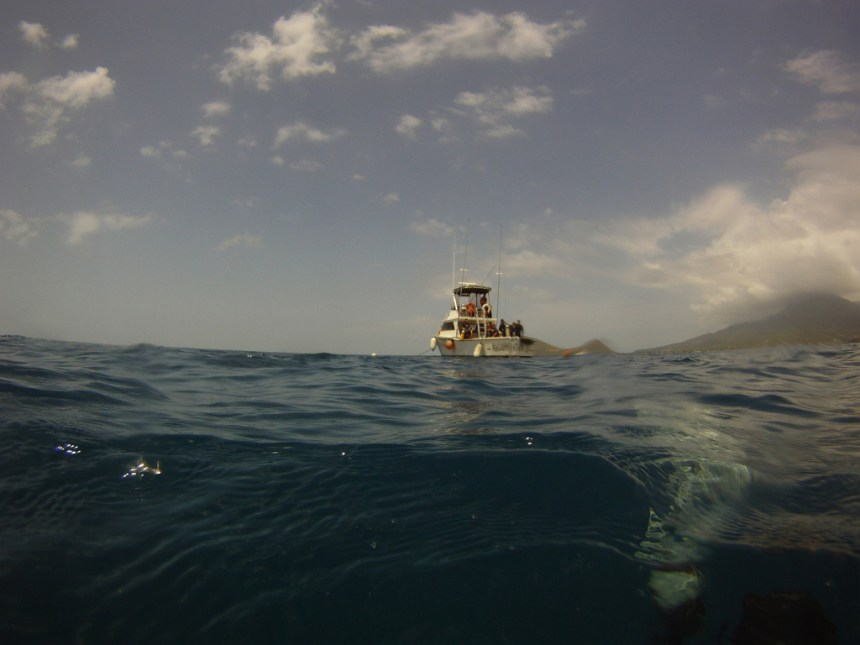 Most of our dives were made from the larger of the dive company's two boats.