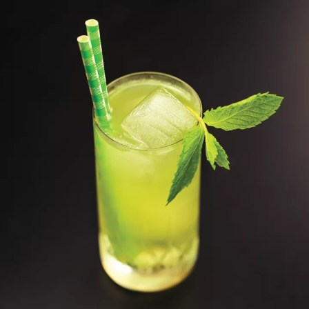 A lime green-hued gin cocktail in a Collins glass atop an ice spear with a sprig of mint and two green paper straws