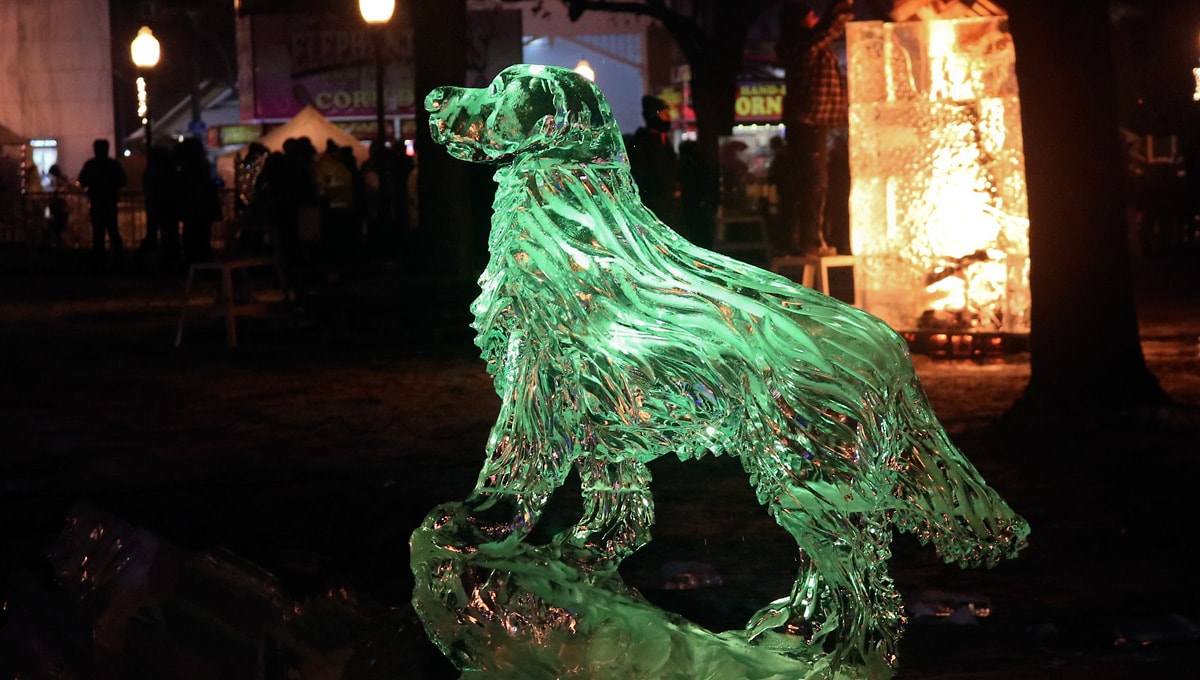 dog ice sculpture standing guard at night, backlit with green light
