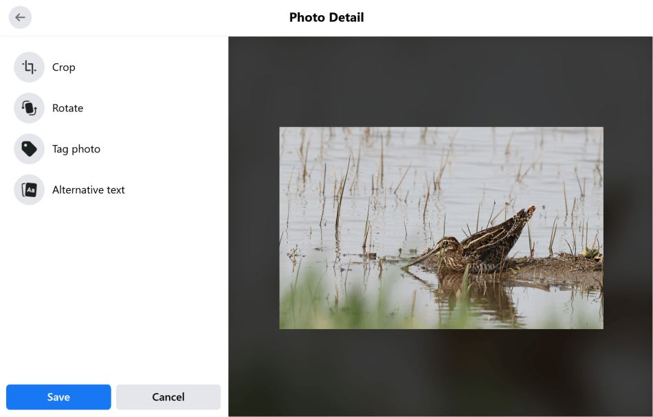 Facebook Photo Detail showing options for editing the photo.