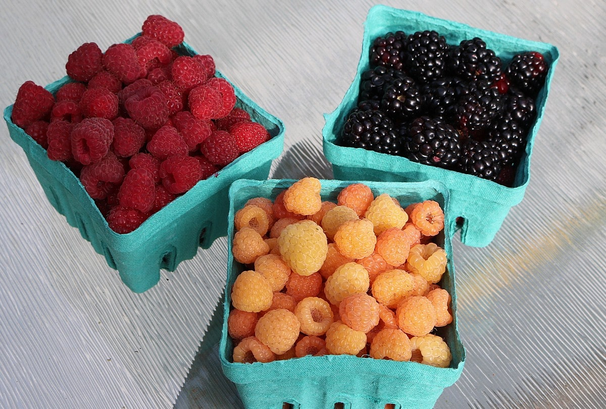 pints of red raspberries, yellow raspberries, and blackberries in green containers.
