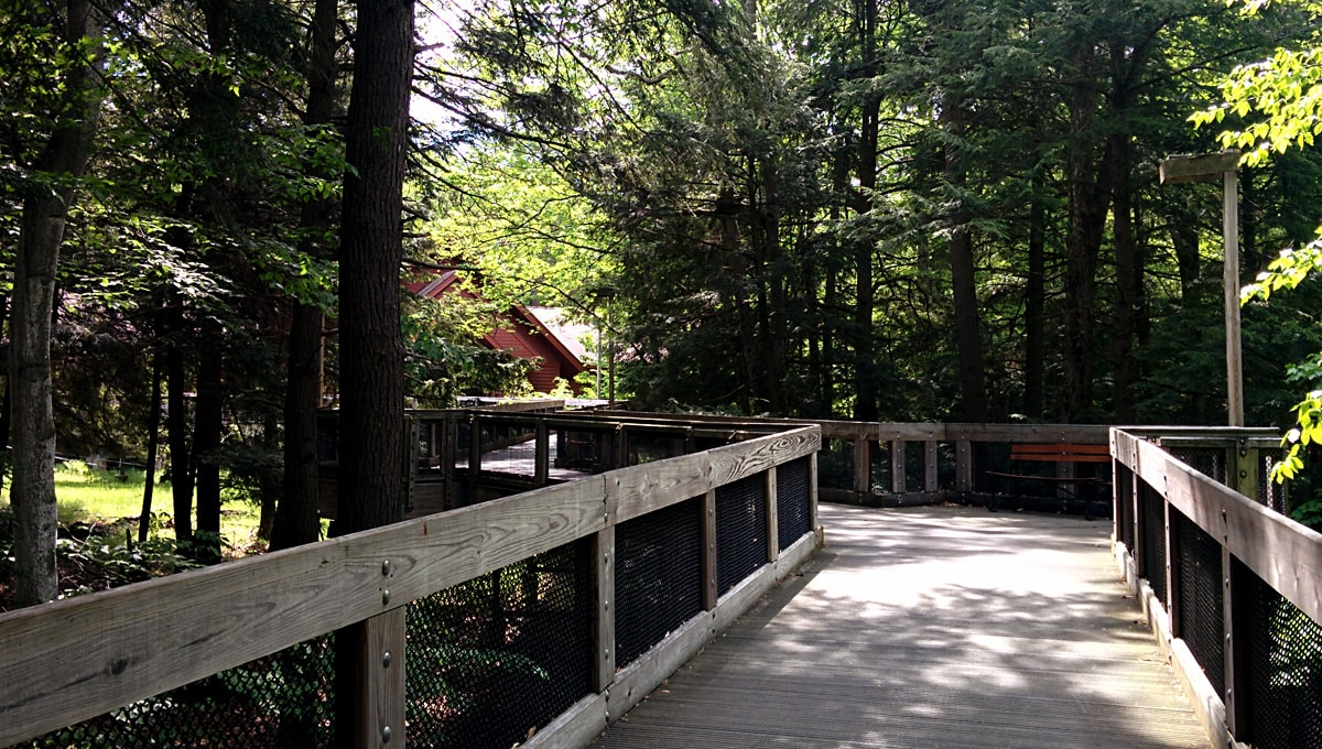 raised wooden boardwalk surrounded by evergreens, Michigan Forest Visitor Center in the background
