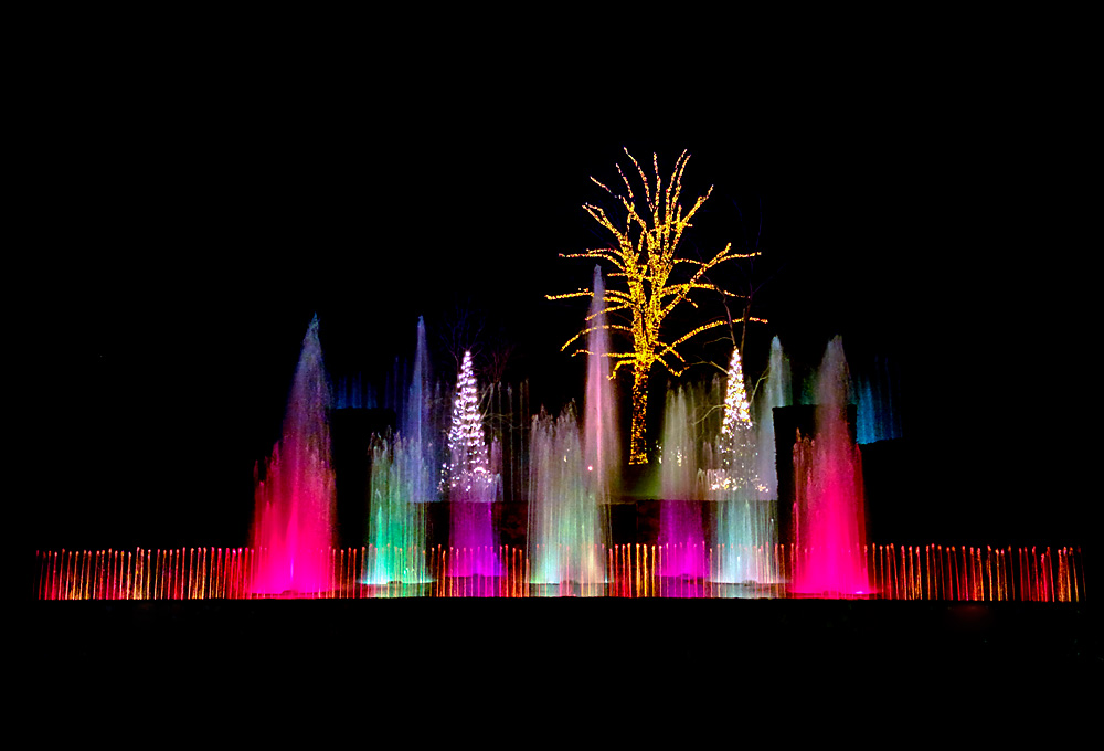 Purple, green, and white colored fountains against a backdrop of a yellow-lit tree