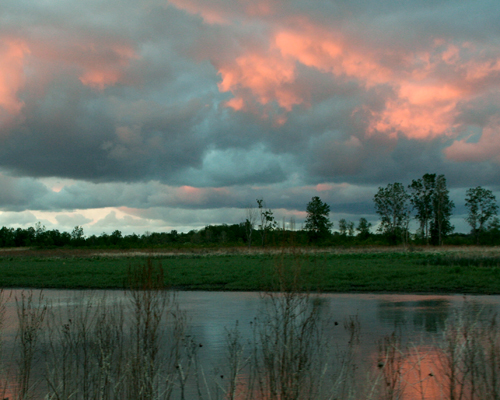 Beautiful pink and blue sky during sunset at Magee Marsh