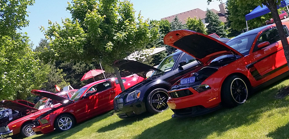 row of Mustangs at Canton Liberty Fest car show
