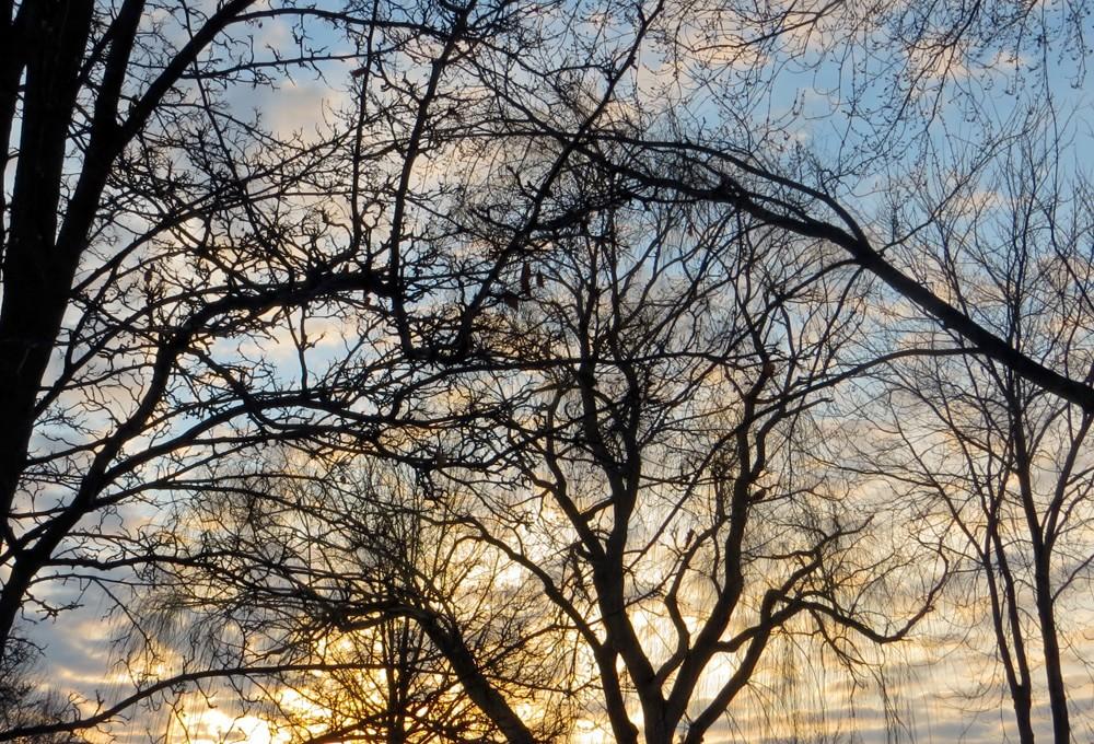 Late winter sunrise in Canton