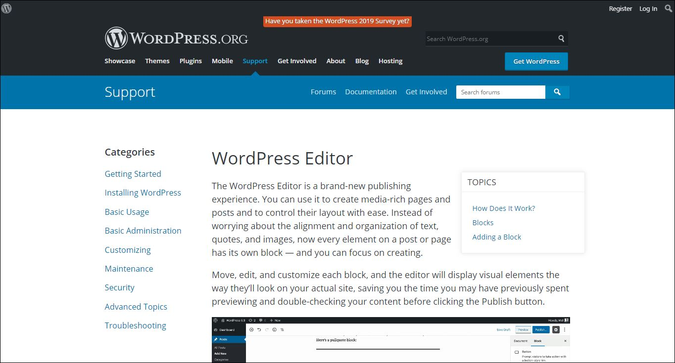 WordPress Editor support page for block editor