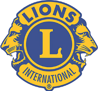 Lions Sports Action