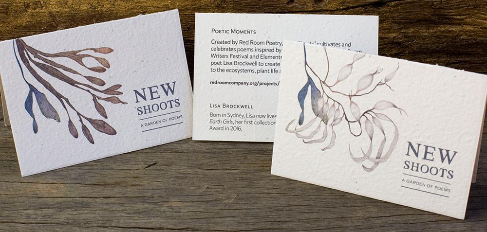 lisa Brockwell- seed cards