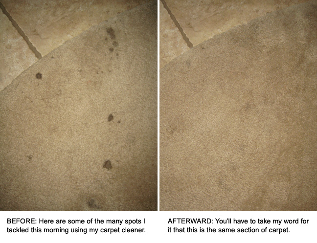 Cleaning Carpets with Sal Suds